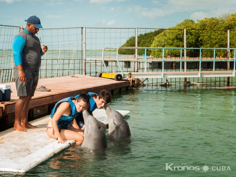 "Interacting with the Dolphins at Cayo Guillermo dolphinarium - Excursión ""Interacción con Delfines en Cayo Coco"""