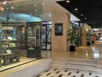 Lobby and shop's view