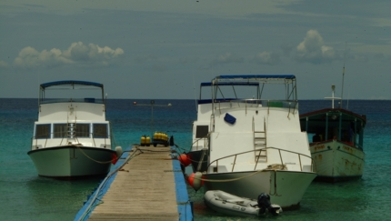 Diving boats at María La Gorda