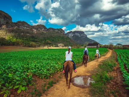 """""""Riding Viñales, Discovering the traditions and charms of the valley"""""""