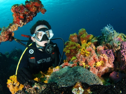 Scuba diving tour in Varadero
