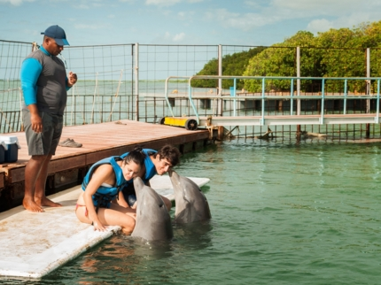 Interacting with the Dolphins at Cayo Guillermo dolphinarium