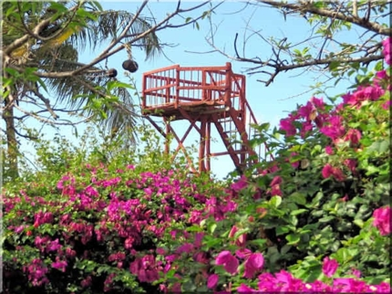Viewpoint, Canagua hill