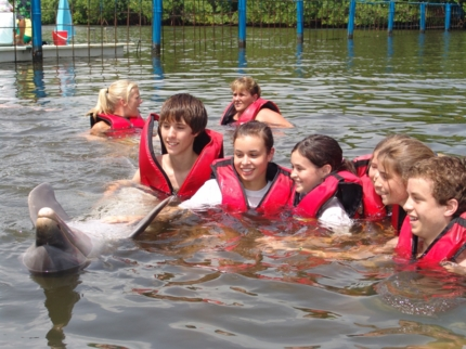 Swimming with dolphins tour at Varadero dolphinarium