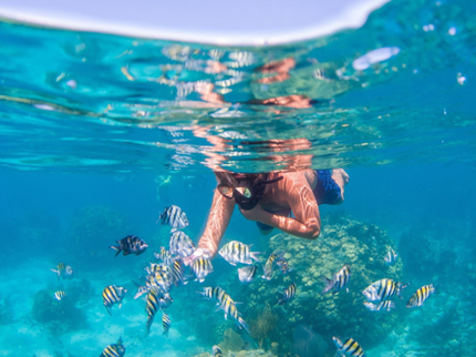 Snorkeling in Cayo Coco