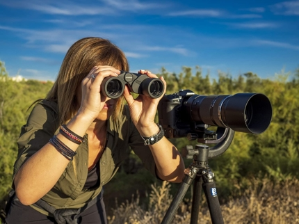 Birdwatching in Cayo Coco