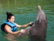 Swimming with dolphins tour at Cayo Guillermo dolphinarium